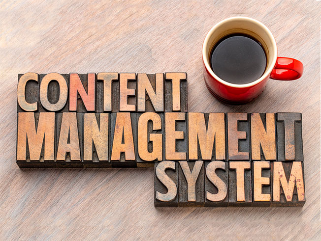 content management system training